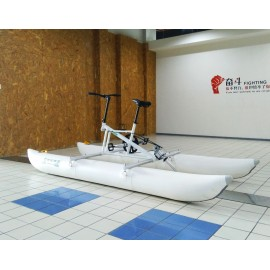 Water Bicycle (1, 2, 3 persons)